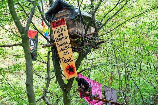 Behörden wollen mit Räumungen im Hambacher Forst beginnen