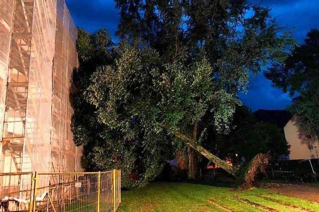 Blitzeinschlag und umgestürzte Bäume in Waldkirch und Elzach