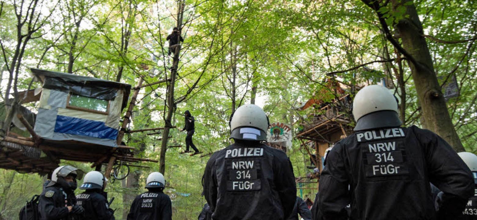 Polizisten gehen gegen die Bewohner de...en sich aus Protest an Bäumen ketten.     Foto: DPA