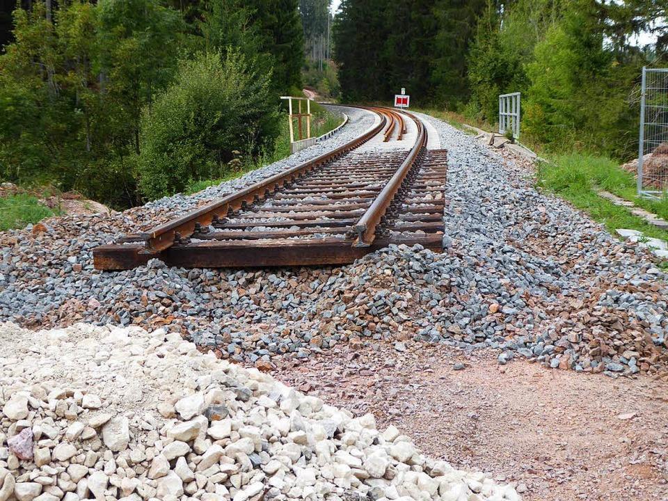 Das Gleis, das von Löffingen  kommt, endet vor dem Kapftunnel.  | Foto: Peter Stellmach