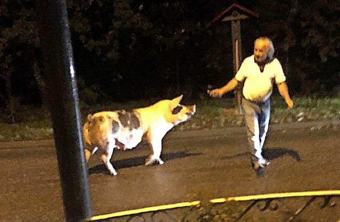 Brav trabt das Schwein dem Alt-Ortsvorsteher hinterher.   | Foto: privat