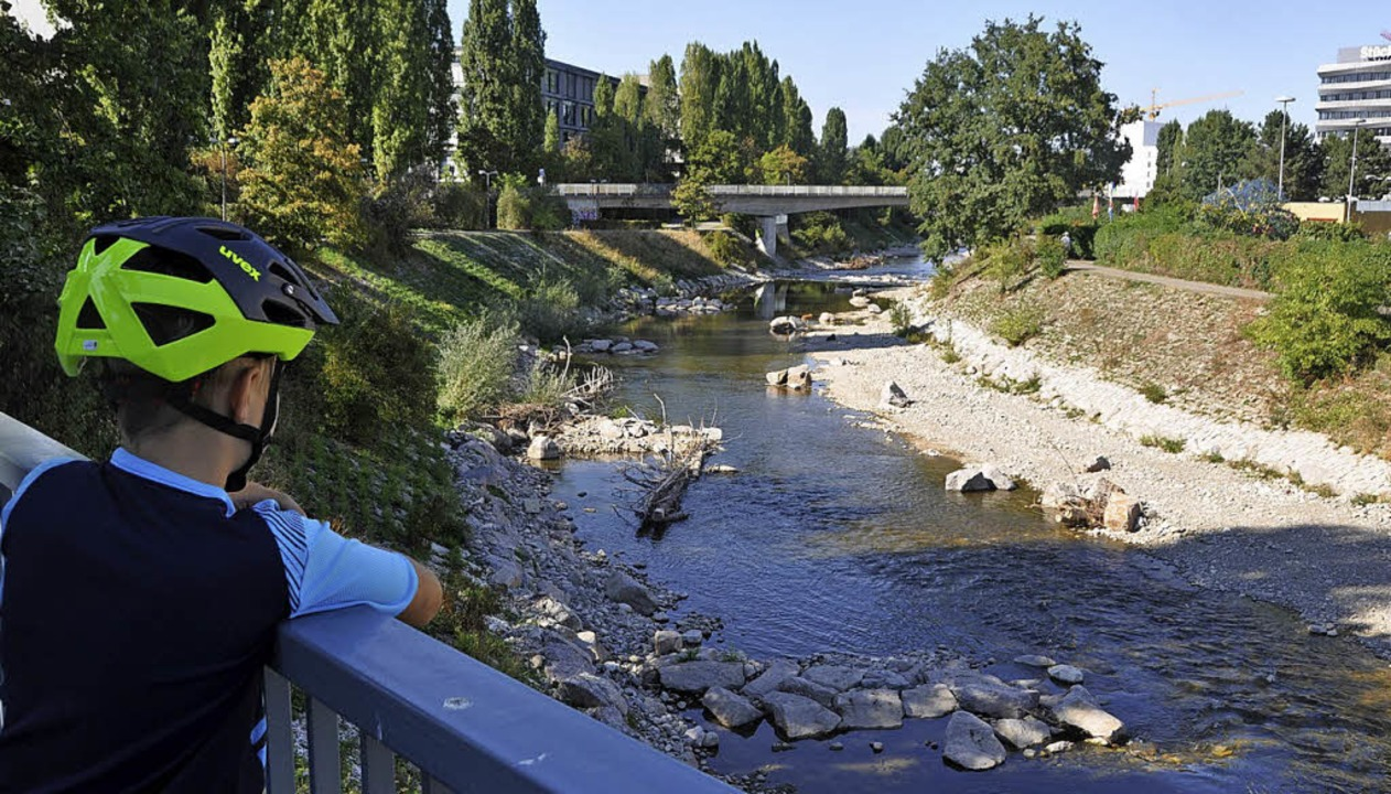 Blick auf  das naturnahe Flussbett     Foto: Daniel Gramespacher