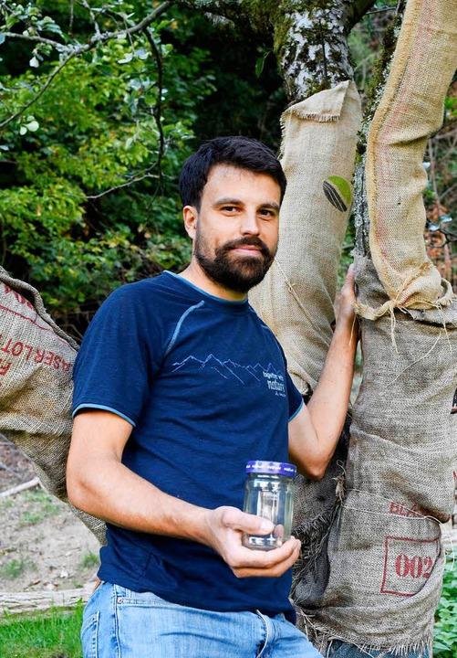 Nicolas Schoof pflegt Streuobstbäume und kennt die Wanze.  | Foto: Thomas Kunz