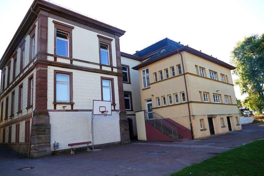 Station 2: Die Schulen und Vereine  | Foto: André Hönig