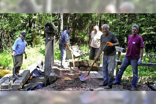 Senioren arbeiten im Wald