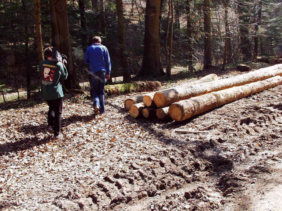 Der Fundort der Leiche in einem Waldst...tsteil Ehrenstetten und Staufen (2003)  | Foto: brigitte sasse