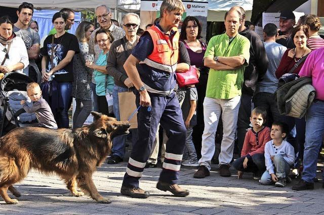 Hundestaffel und Waffeln