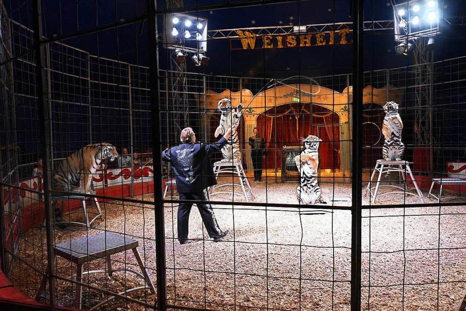 Circus Manuel Weisheit (Foto: Thomas Kunz)