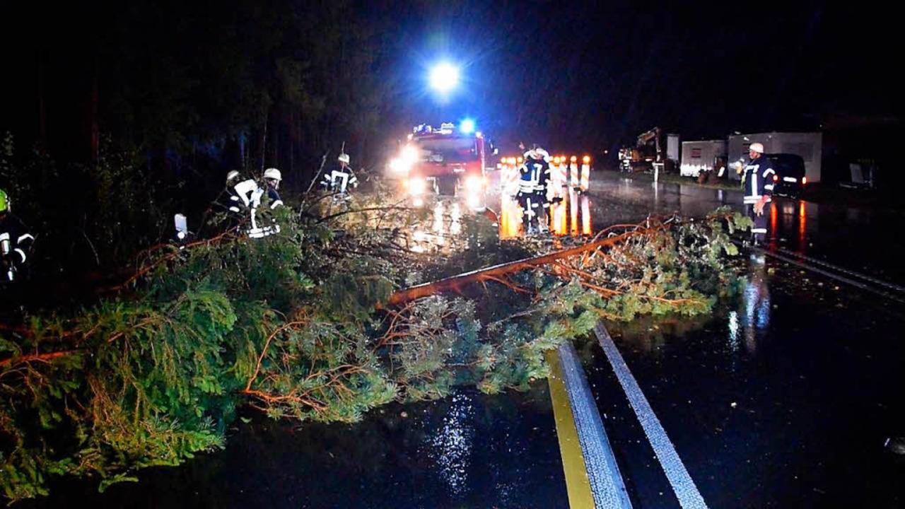 Bei Rötenbach war die B31 durch Baumbruch zeitweise blockiert.  | Foto: kamera24.tv