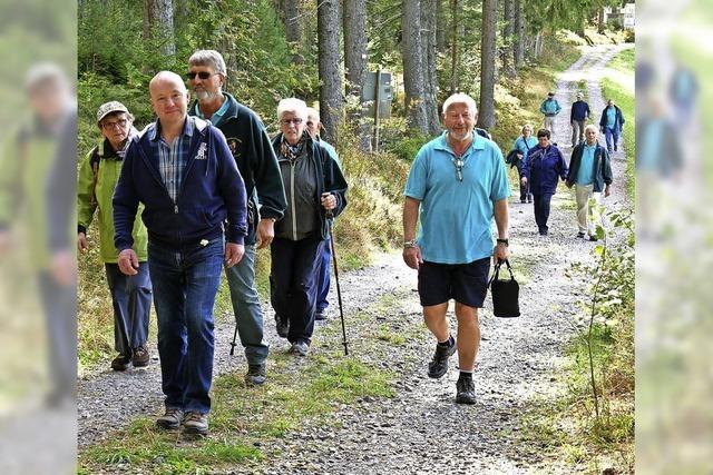 Senioren in der Überzahl