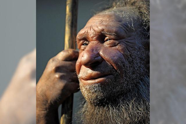 Neanderthaler waren Feinmotoriker