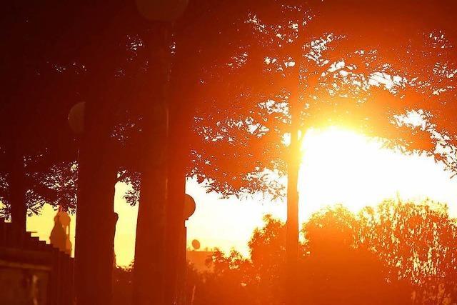 Sonne blendet Autofahrerin in Lörrach – 10.000 Euro Schaden