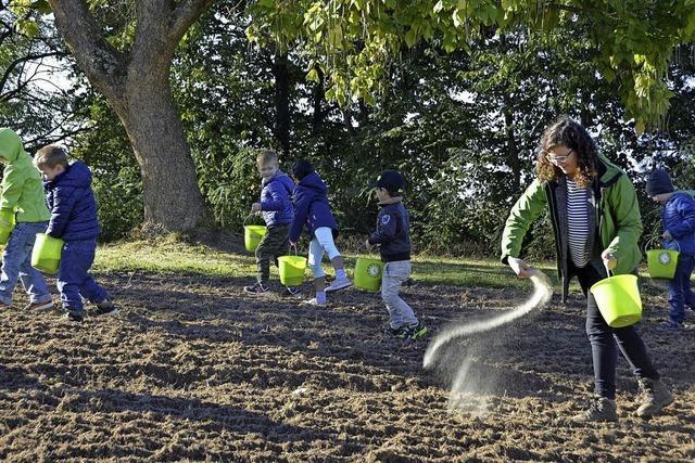 Kinder säen eine Blumenwiese ein
