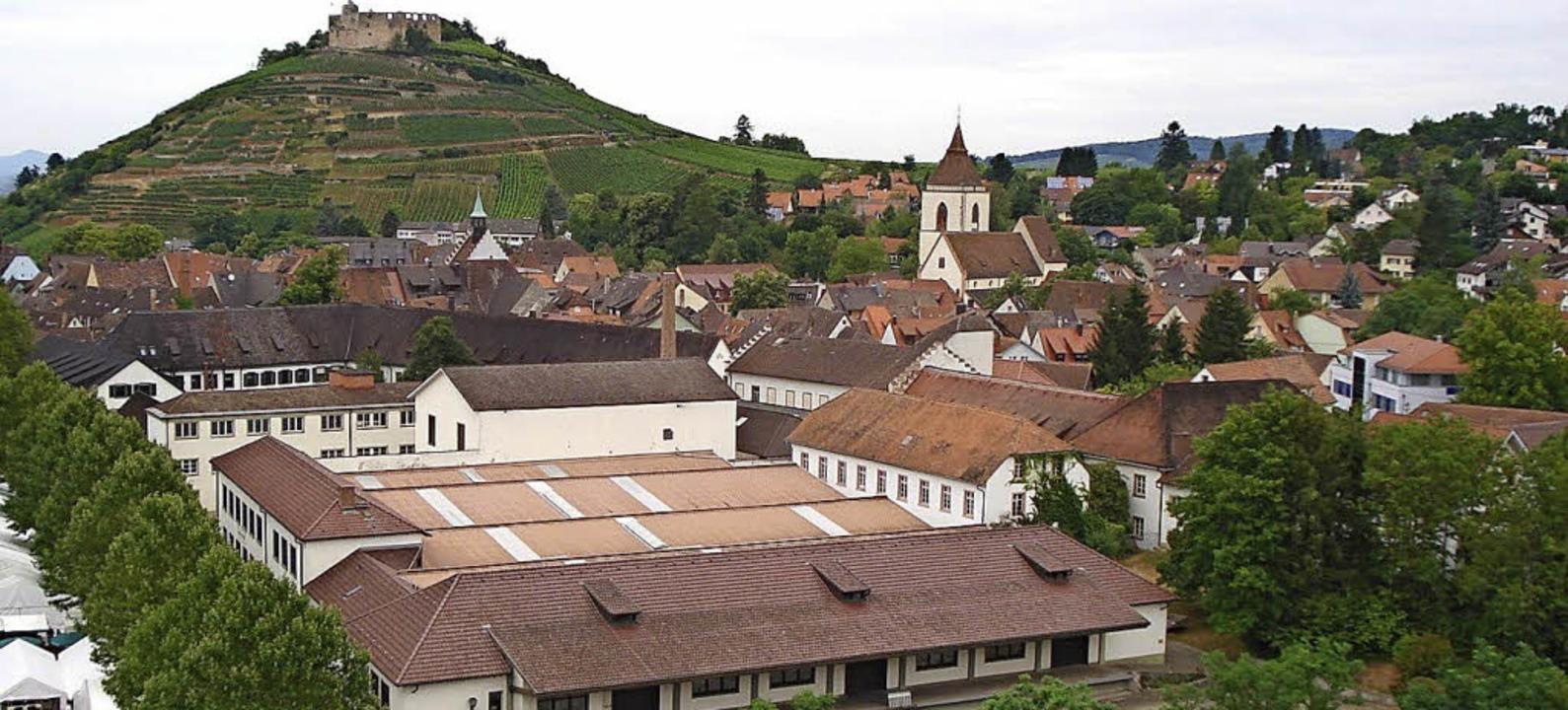 Das Schladerer-Areal in Staufen vor der Burg     Foto: Elmar Bernauer