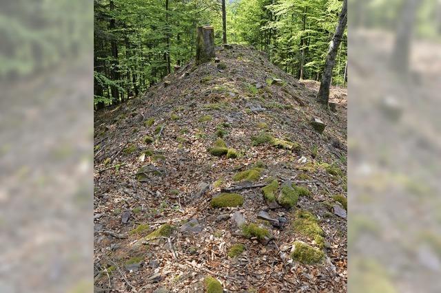 Wehranlage ist rund 3000 Jahre alt