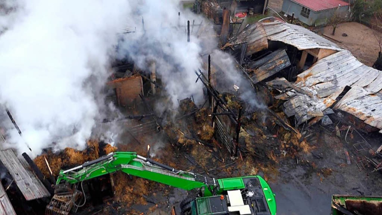 Nach dem Feuer: In Hüsingen hatte dies...r viele  Tiere kam jede Hilfe zu spät.    Foto: Martin Klabund