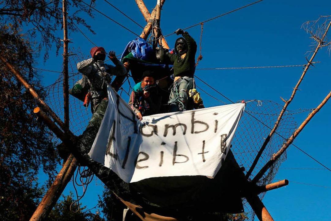 Seitdem die Räumung der Baumhäuser im ...r deutlich mehr Verträge als sonst ab.  | Foto: dpa