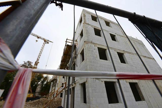 Mildere Strafe für Bauunternehmer aus Freiburg – trotz Millionenschaden