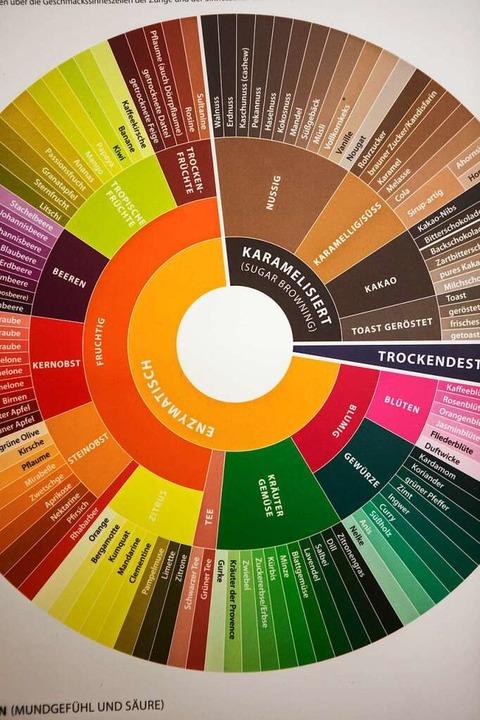 Welche Aromen kann Kaffee haben? Diese Skala zeigt die Vielfalt.   | Foto: Joss Andres