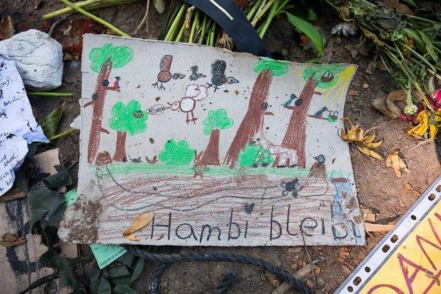 Das Urteil sagt nichts über die Zukunft des Hambacher Forsts
