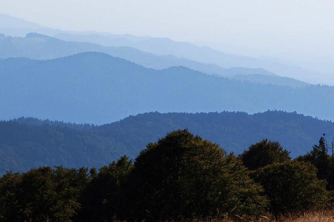 Ausblick am Rand eines Weges im Gipfelbereich.  | Foto: Gabriele Zahn