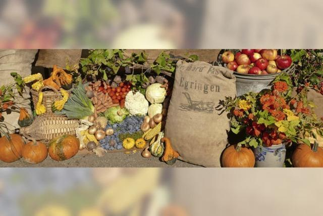 Egringer Sänger feiern einen strahlenden Herbsttag