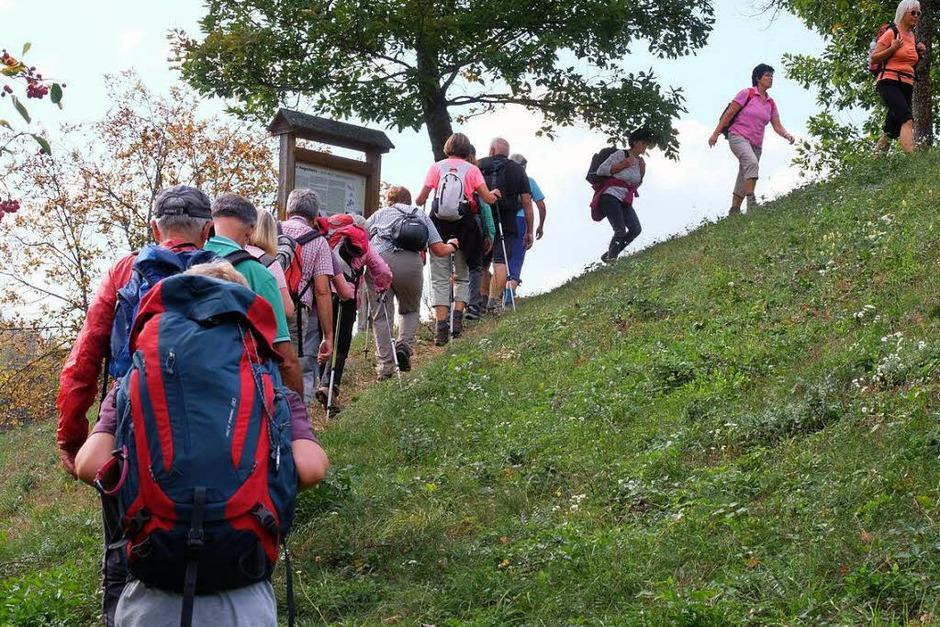 Die gemeinsame Wanderung der BZ mit dem Schwarzwaldverein Bad Bellingen ging durch das reizvolle Eggenertal von und nach Obereggenen. Wanderführer Fritz Hurst konnte mehr als 50 Mitwanderer auf der etwa 13 Kilometer langen Rundtour begrüßen. (Foto: Martin Pfefferle)