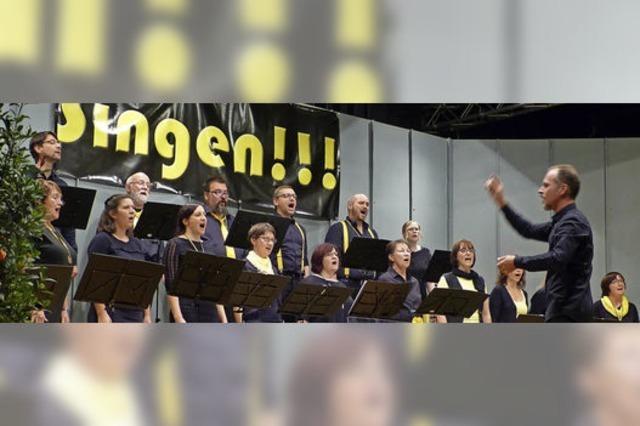 Von Brahms bis zu den Sportfreunden Stiller
