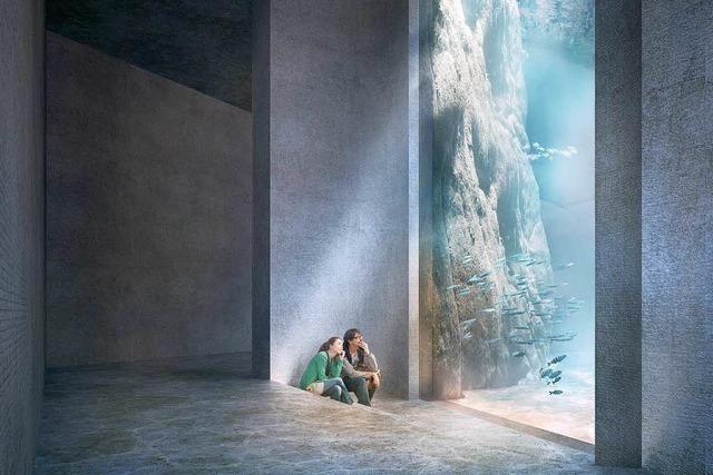 Der Basler Zoo erhält Fünf-Millionen-Zusage für Ozeanium