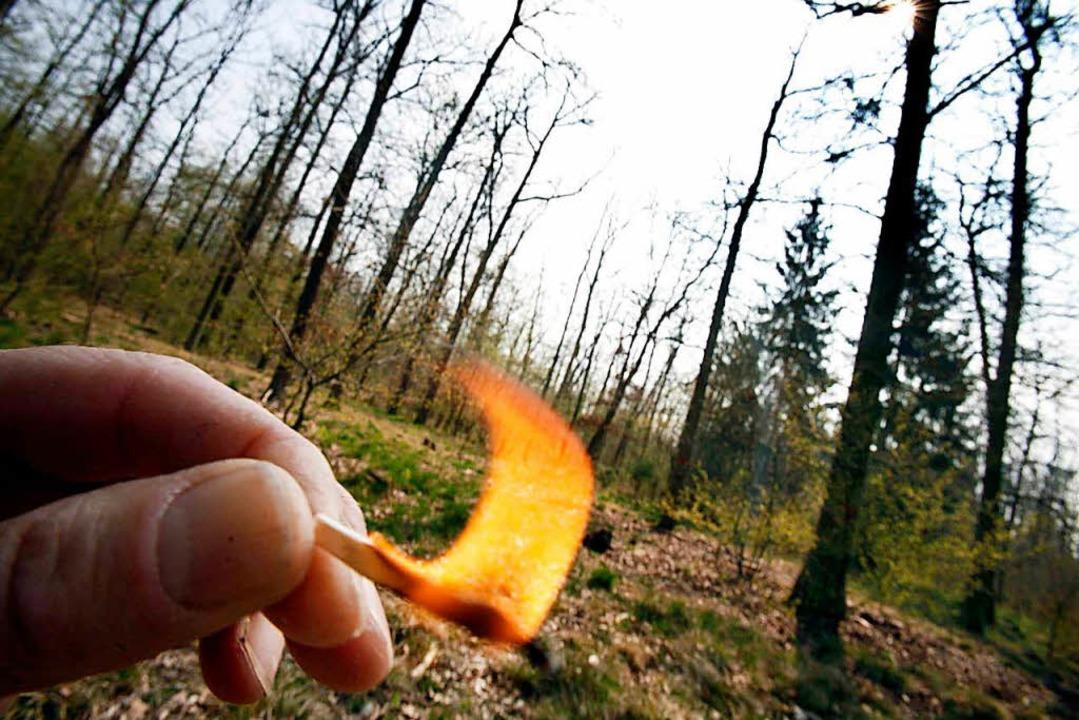 Nach dem Landeswaldgesetz darf in den ...ung der üblichen Sicherheitsmaßnahmen.  | Foto: dpa