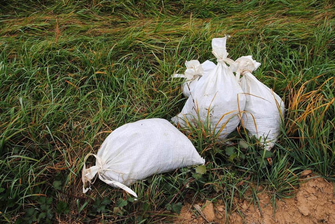In Säcken lagert ausgesiebter Untergru...eitliche Relikte untersucht zu werden.  | Foto: Manfred Frietsch