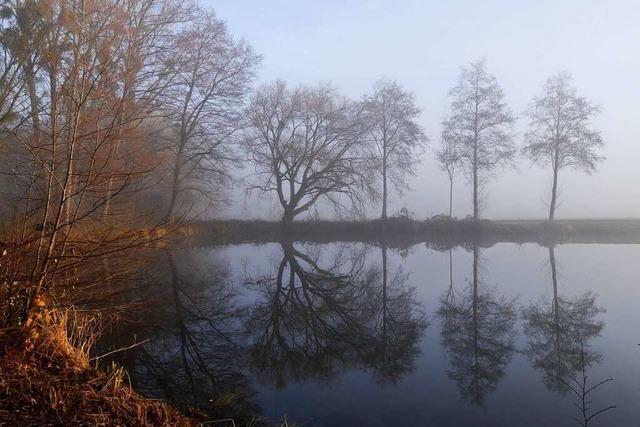 Nebliger Neujahrsmorgen zwischen Vörstetten und Gundelfingen