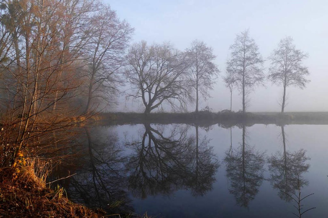 Nebel am Neujahrsmorgen.    Foto: Anna Witte-Rotter
