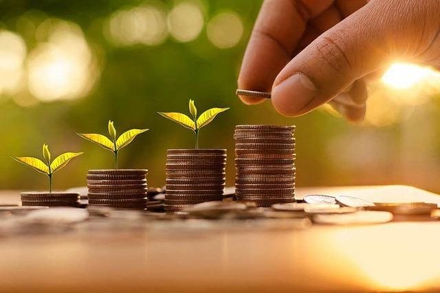 Warum nachhaltige Investitionen auch gut für den Geldbeutel sind