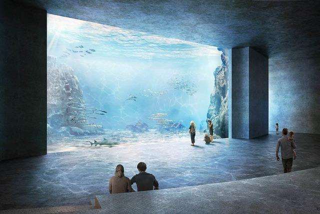 Der Große Rat in Basel genehmigt den Bau des Großaquariums Ozeanium