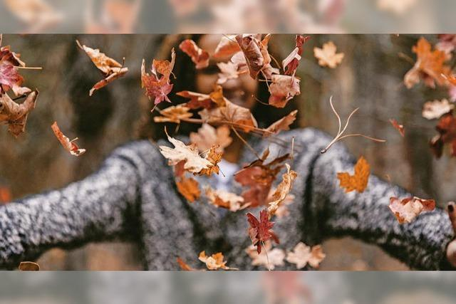 Mach' dir den Herbst wunderschön
