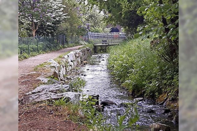 Ein Damm bietet Schutz