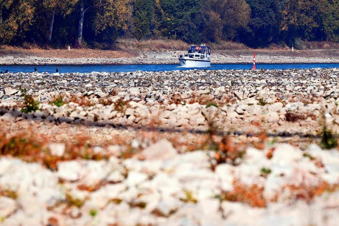 Wo ist der Rhein geblieben?  | Foto: dpa