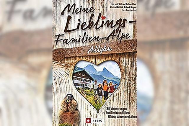 Alpen im Allgäu