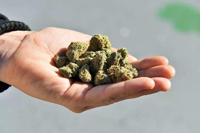 Für die Freigabe von Cannabis sprechen gute Gründe