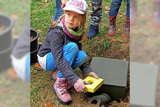 Eifrige Kinder helfen den brummenden Bestäubern