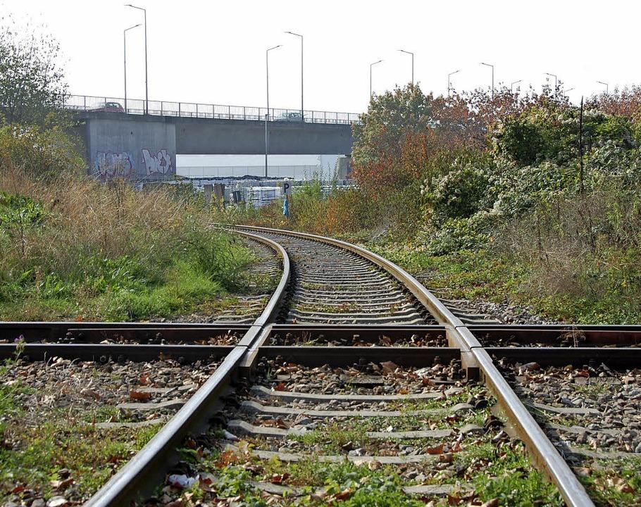 Die Trasse der Hafenbahn, im Hintergrund die Palmrainbrücke.    Foto: Herbert Frey