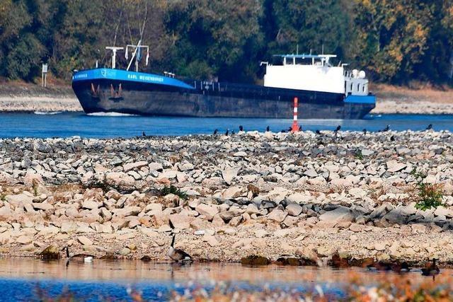 Den Schiffen auf dem Rhein fehlt das Wasser unterm Kiel