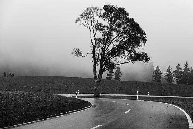 Mystische Orte im Schwarzwald