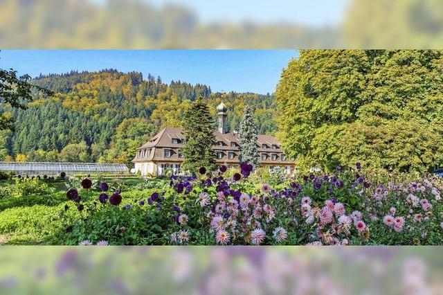 Bestes Herbstwetter im Klostergarten