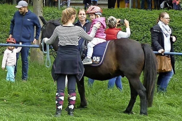 Erster Altdorfer Pony-Hock