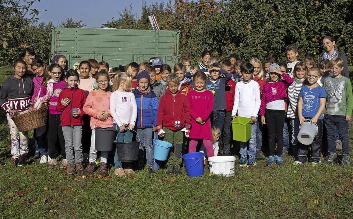 Der Arbeitskreis Moscht und mehr aus H...ritzinger Grundschule Äpfel für Saft.     Foto: volker münch