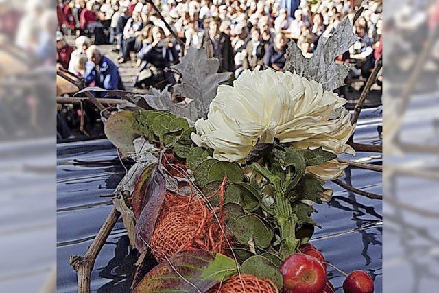 BZ-Card bietet Chrysanthemen-Workshop an