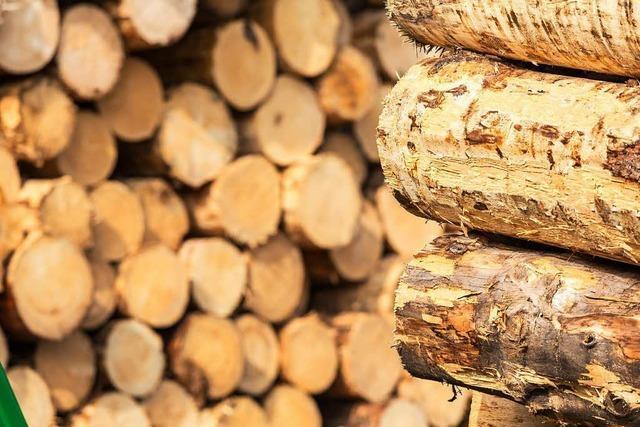 Sägewerke können gar nicht alles Holz aufnehmen