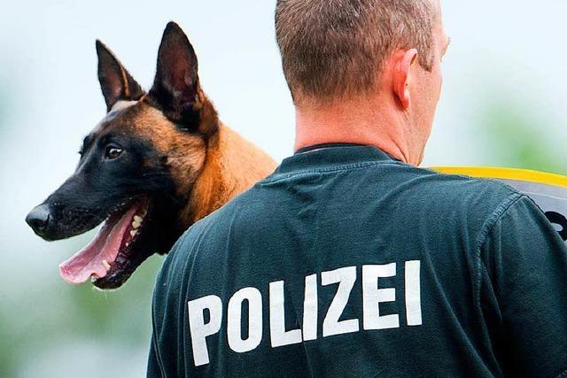 Zwei Tatverdächtige nach Fahndung mit Polizeihubschrauber und Hundestaffel festgenommen
